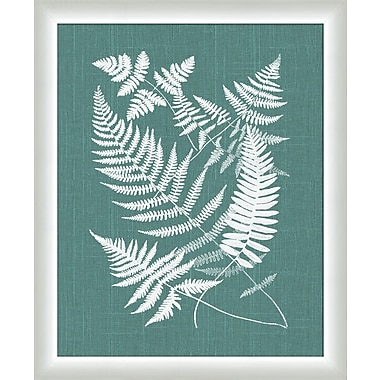 Melissa Van Hise Buckler Ferns Framed Graphic Art; Spa Blue