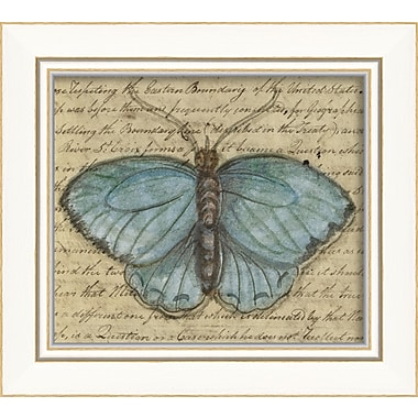 The Artwork Factory Butterfly Framed Graphic Art; Blue
