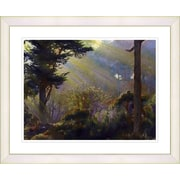Studio Works Modern ''Forest Sunbeams'' by Mia Singer Framed Graphic Art; White