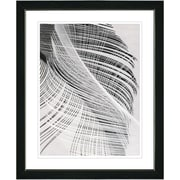 Studio Works Modern ''Dancing Feathers'' by Zhee Singer Framed Graphic Art; Black