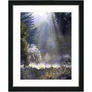 Studio Works Modern ''Morning Light'' by Mia Singer Framed Fine Graphic Art; Black