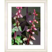 Studio Works Modern ''Red Bells from Tucapel'' by Zhee Singer Framed Graphic Art; White