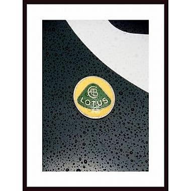 Printfinders 'Lotus Badge' by John Nakata Framed Photographic Print