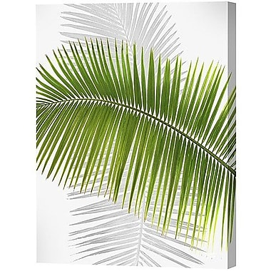 Menaul Fine Art Palm Frond Limited Edition by Scott J. Menaul Graphic Art on Wrapped Canvas; 38 x 30