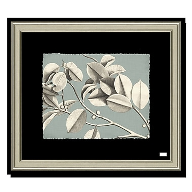 Melissa Van Hise Rheede's II Framed Graphic Art; Spa Blue