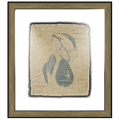 Melissa Van Hise Pretty Fruit I Framed Graphic Art; Navy