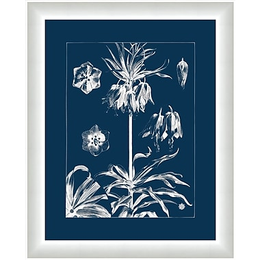 Melissa Van Hise Flora I Framed Graphic Art; Gray/Navy