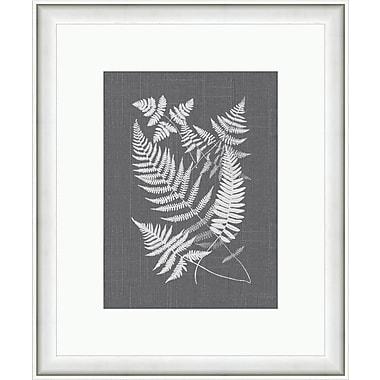 Melissa Van Hise Bucklen Framed Graphic Art; Gray