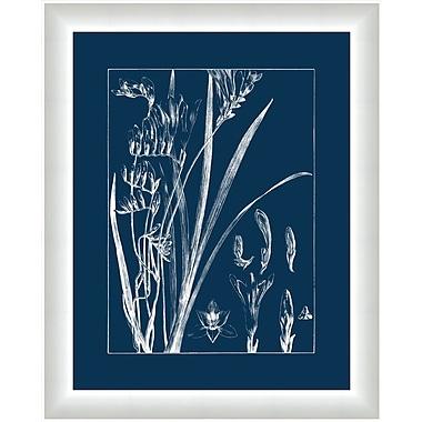 Melissa Van Hise Flora II Framed Graphic Art; Gray/Navy