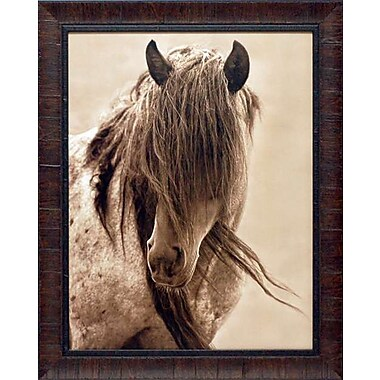 North American Art 'Freedom' by Lisa Dearing Framed Photographic Print