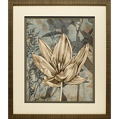 North American Art Tulip and Wildflowers VI by Jennifer Goldberger Framed Graphic Art
