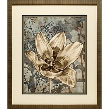 North American Art Tulip and Wildflowers VIII by Jennifer Goldberger Framed Graphic Art