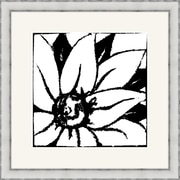 Melissa Van Hise Bloomy Burst II Framed Graphic Art; Black