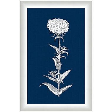 Melissa Van Hise White Flora V Framed Graphic Art