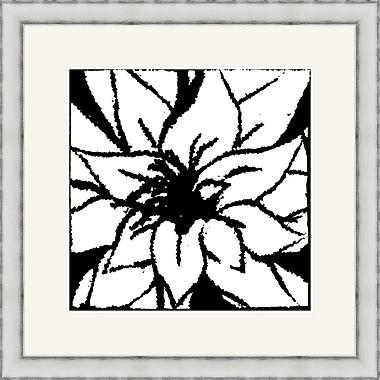 Melissa Van Hise Bloomy Burst III Framed Graphic Art; Black