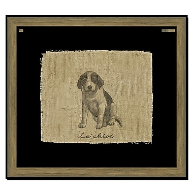 Melissa Van Hise Dog II Framed Graphic Art; Black