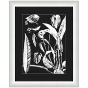Melissa Van Hise Flora III Framed Graphic Art; White/Black