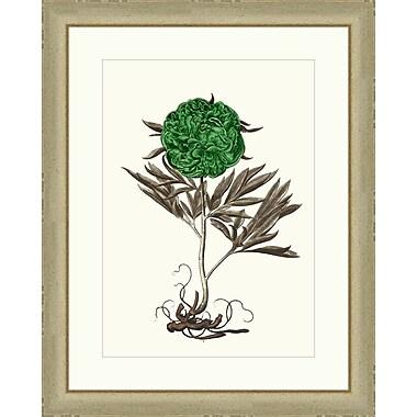 Melissa Van Hise Flowers lll Framed Graphic Art