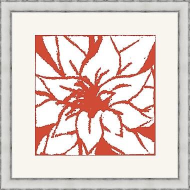 Melissa Van Hise Bloomy Burst III Framed Graphic Art; Red