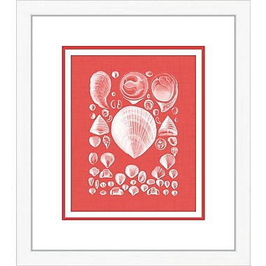 Melissa Van Hise Coquillage IV Framed Graphic Art; Red