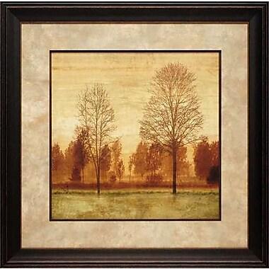 North American Art 'Sunrise I' by Chris Donovan Framed Painting Print