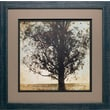 North American Art 'Under the Trees II' by Amy Melious Framed Photographic Print