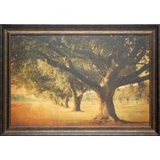 North American Art Island Oak by William Guion Framed Photographic Print