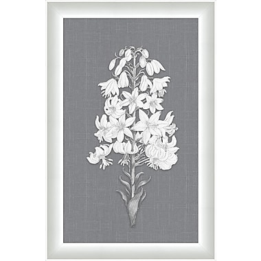 Melissa Van Hise Flora Vl Framed Graphic Art