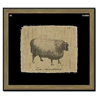 Melissa Van Hise Sheep I Framed Graphic Art; Black
