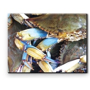 Rightside Design I Sea Life Blue Crab Photographic Print on Wrapped Canvas