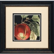 North American Art Dramatic Apple by Vision Studio Framed Graphic Art