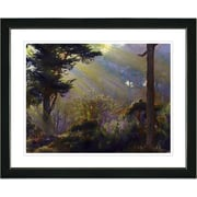 Studio Works Modern ''Forest Sunbeams'' by Mia Singer Framed Graphic Art; Black