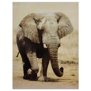 Oriental Furniture Walking Elephant Photographic Print on Wrapped Canvas