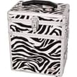 Sunrise Cases Zebra Textured Printing Jewelry and Makeup Case