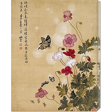 Global Gallery 'Corn Poppy and Butterflies' by Ma Yuanyu Painting Print on Wrapped Canvas