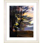Studio Works Modern ''Evening Foliage'' by Zhee Singer Framed Graphic Art; White