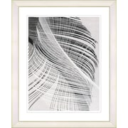 Studio Works Modern ''Dancing Feathers'' by Zhee Singer Framed Graphic Art; White