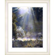 Studio Works Modern ''Morning Light'' by Mia Singer Framed Fine Graphic Art; White
