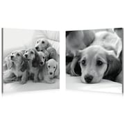 BZB Goods Puppies Love Modern 2 Piece Photographic Print