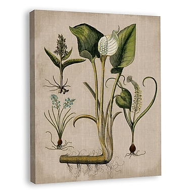 Melissa Van Hise Lilies IV Graphic Art on Wrapped Canvas