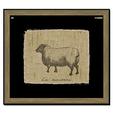 Melissa Van Hise Sheep II Framed Graphic Art; Black