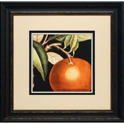 North American Art 'Dramatic Orange' by Vision Studio Framed Graphic Art