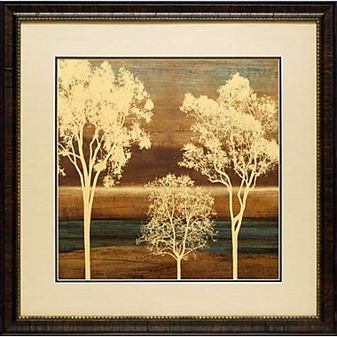 North American Art Ambiance II by Chris Donovan Framed Painting Print