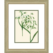 Melissa Van Hise Emerald Foliage lll Framed Graphic Art