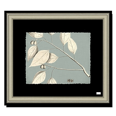 Melissa Van Hise Rheede's III Framed Graphic Art; Spa Blue