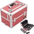 Sunrise Cases Professional Aluminum Cosmetic Makeup Case