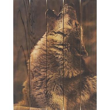 Gizaun Art Crying Wolf Photographic Print; 28 x 36