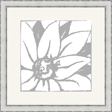 Melissa Van Hise Bloomy Burst II Framed Graphic Art; Gray