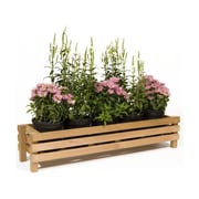 Baltic Leisure Rectangular Planter Box; 8.5'' H x 34.13'' W x 11'' D