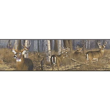 Inspired By Color™ Borders Deer Wallpaper, Brown